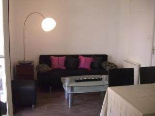 Flat offering every comfort, 34 m² in size, 100 meters away from the Croisette and the beach - Cannes vacation rentals