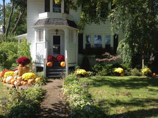 Charming home on quiet street.. Close to wineries, college, lake and downtown! - Geneva vacation rentals