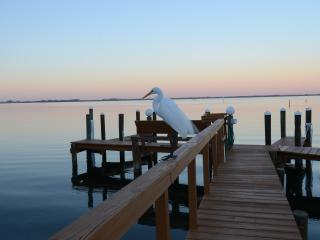 LongBoat Key Water Front /Bay View Condo Remodeled - Longboat Key vacation rentals