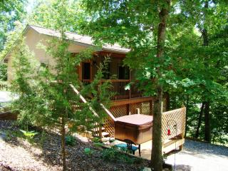 FOX DEN CABIN near Cherokee in the Smoky Mountain - Bryson City vacation rentals