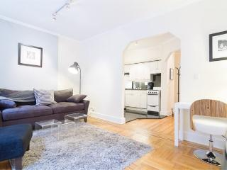 prime upper east! Large 2Br Sleeps 5 - New York City vacation rentals