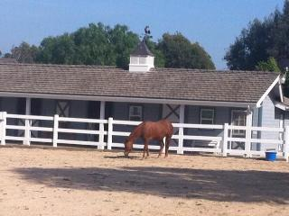 Equestrian community close to Disney - Orange vacation rentals