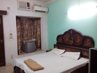 Stay in New Delhi INDIA - Greater Kailash vacation rentals