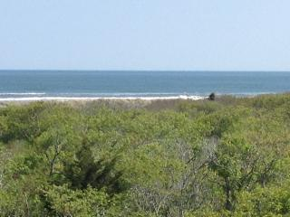 Pristine Ocean Views! 150 Steps to Beach!! - Diamond Beach vacation rentals