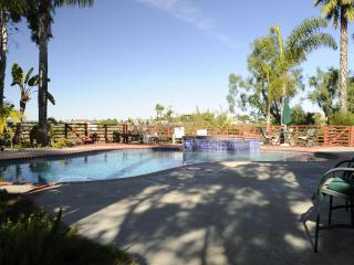 Peaceful Poolside Living with Spectacular Views - Vista vacation rentals