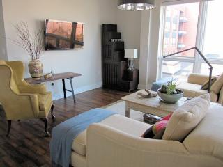 Downtown 2 Bedroom Condo - Charlottesville vacation rentals
