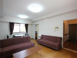 NEW! KYOTO`s Reasonable Condo in the BEST LOCATION - Kanto vacation rentals