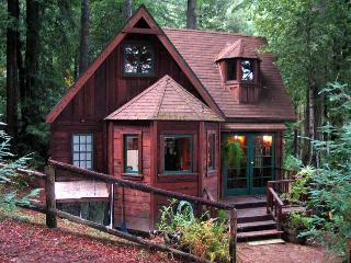 DREAMCATCHER - Russian River vacation rentals