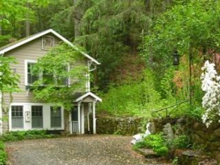 Cottage Over Yonder - Black Mountain Monthly Furnished - Montreat vacation rentals
