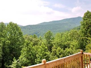 Pearson Lane - Black Mountain Vacation Rentals - Black Mountain vacation rentals