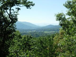 Welker Mountain Home - Black Mountain Vacation Rentals - Montreat vacation rentals