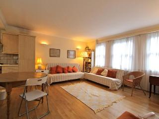 Carteret Street, (IVY LETTINGS). Fully managed, free wi-fi, discounts available - London vacation rentals