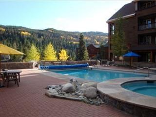 Buffalo Lodge #8372 - Keystone vacation rentals