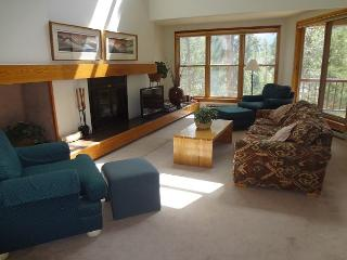Quicksilver #1658 - Keystone vacation rentals