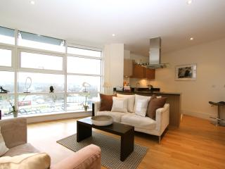 Battersea Reach, (IVY LETTINGS). Fully managed, free wi-fi, discounts available - London vacation rentals