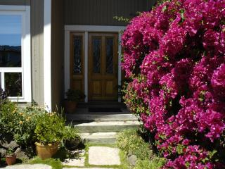 Luxurious Waterfront  Home  San Francisco Bay Area - Larkspur vacation rentals