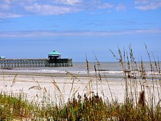 The beauty of the Atlantic coast just steps away - Seacoast Villas 5 - Folly Beach - rentals