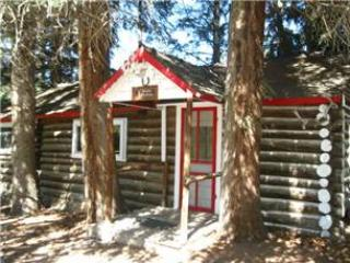 Charming 1 BR Log Cabin at Three Rivers Resort in Almont (#1) - Almont vacation rentals