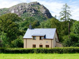 CAPEL DOLHENDRE, family friendly, country holiday cottage, with a garden in Llanuwchllyn, Ref 3632 - Llanuwchllyn vacation rentals