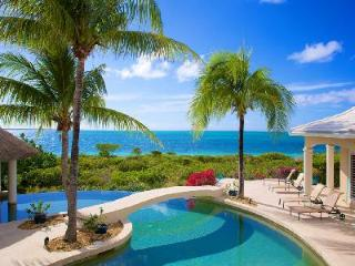 Beachfront Avalon with double edge infinity pool, swim up bar & lush greenery - Providenciales vacation rentals