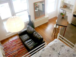 Riverfront Williamsburg Loft - New York City - Barcelona vacation rentals