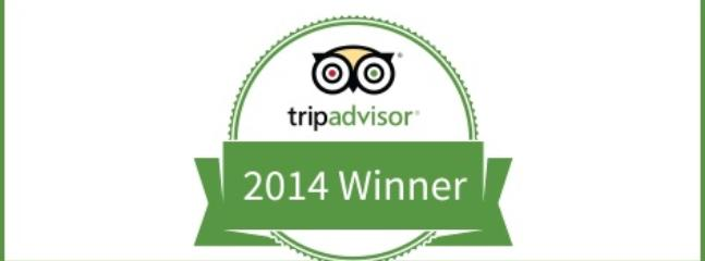 TripAdvisor's award for 2014 Certificate of Excellence - Ararat View Apartment - Yerevan - rentals