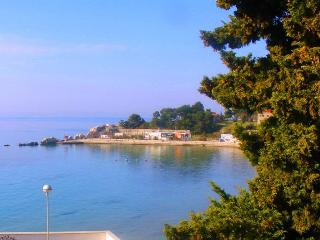 Apartment Suzy, Bacvice beach, Split - Split vacation rentals