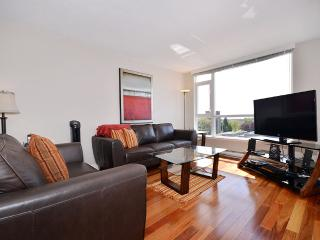 Downtown Victoria 2 Bedroom Penthouse with Large Rooftop Patio and Views - Victoria vacation rentals