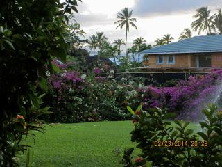 Close to ocean-Wailea Ekahi 20B - Wailea vacation rentals