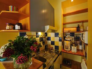 Marais/Charming studio in the center of Paris #SUNSHINE - Paris vacation rentals
