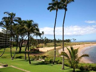 MENEHUNE SHORES, #218*^ - Kihei vacation rentals