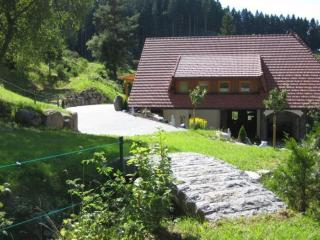 LLAG Luxury Vacation Apartment in Triberg im Schwarzwald - 592 sqft, comfortable, nice furnishings (#… - Black Forest vacation rentals