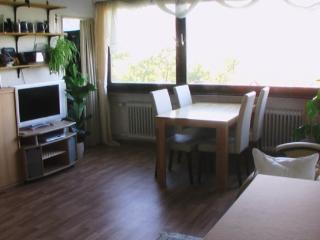 Vacation Apartment in Marburg - nice, clean (# 498) - Germany vacation rentals