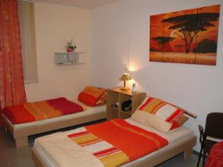 Single Room in Burghausen (Altötting) - affordable, nice, convenient (# 1727) - Burghausen (Salzach) vacation rentals