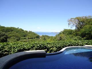 Casa Frederick - Stunning Ocean View Villa- A home away from home! - Playas del Coco vacation rentals
