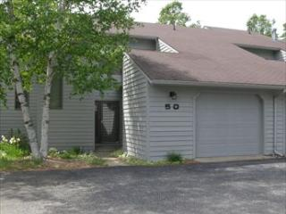 Hideaway Valley Unit 50 77645 - Northwest Michigan vacation rentals