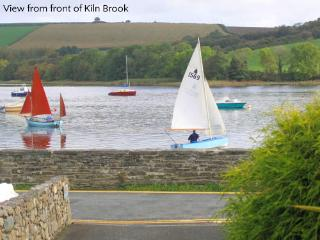 Pet Friendly Holiday Cottage - Kiln Brook Cottage, St Dogmaels - Pembrokeshire vacation rentals