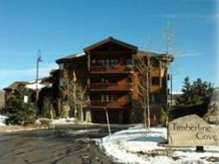TIMBERLINE COVE #208 - Image 1 - Frisco - rentals