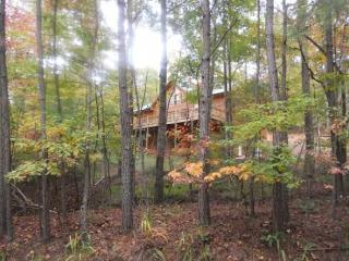 Welcome to the Buck Stops Here - Ellijay vacation rentals