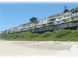 404/Clam Hut *OCEAN FRONT* - Santa Cruz vacation rentals