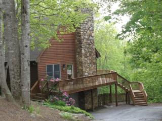 A Mountain Escapade - Fletcher vacation rentals