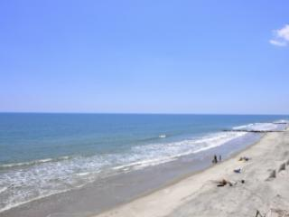 View of the Beach facing Southwest - 1 Summer Place - Folly Beach - rentals