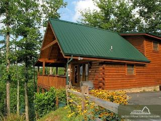BREATHTAKING VIEW - Gatlinburg vacation rentals