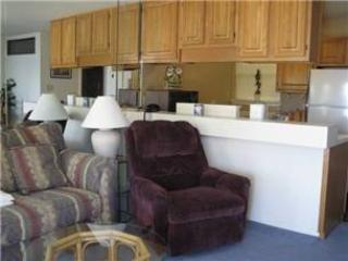Willow Beach A 9 - Hot Springs vacation rentals