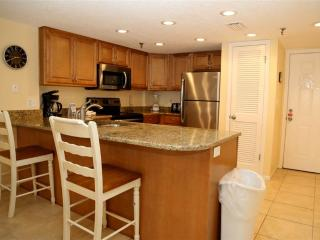 #503 Beach Place Condos - Madeira Beach vacation rentals
