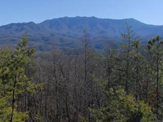 Apparent Seclusion - Gatlinburg vacation rentals