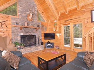 Yogi - Gatlinburg vacation rentals