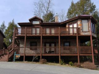 The View - Gatlinburg vacation rentals