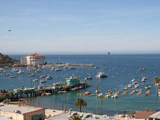 176 Middle Terrace - Catalina Island vacation rentals