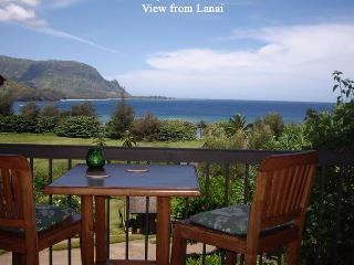 Hanalei Bay Resort, Condo 7307 - Kailua-Kona vacation rentals